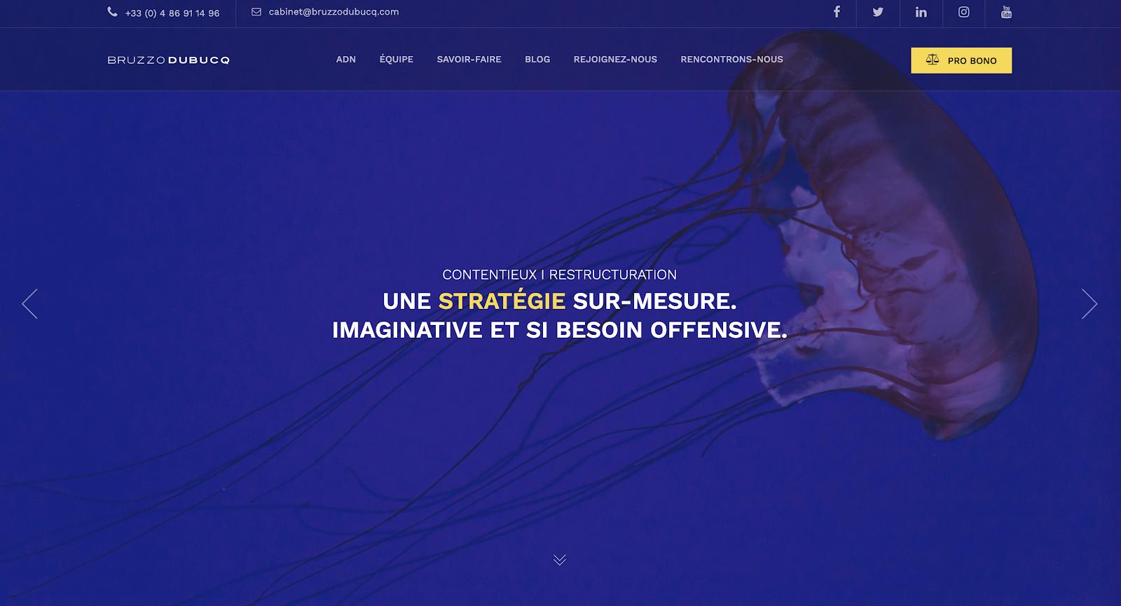 site du cabinet Bruzzo Dubucq
